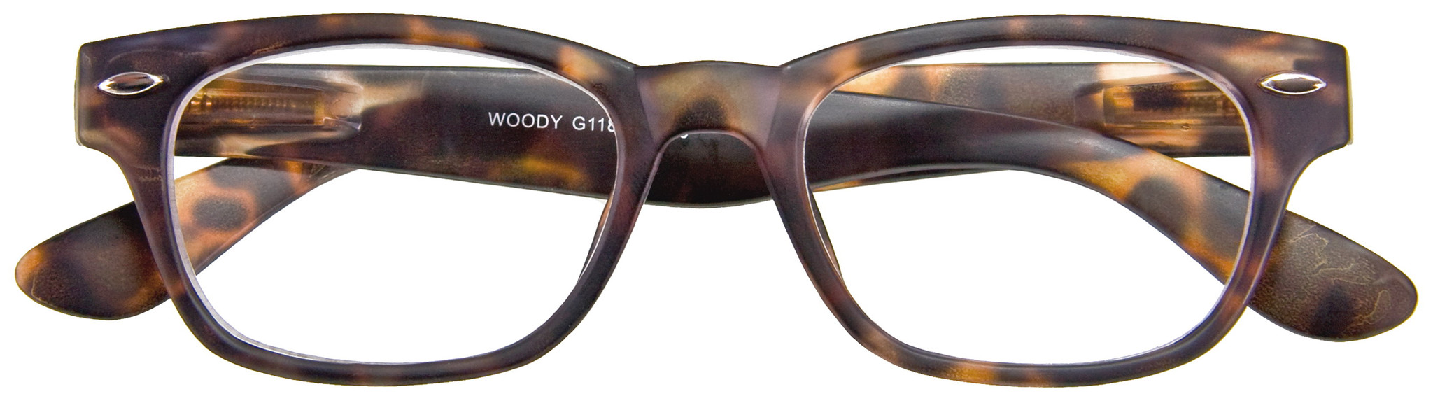 Woody Havana Readers by I Need You Readers